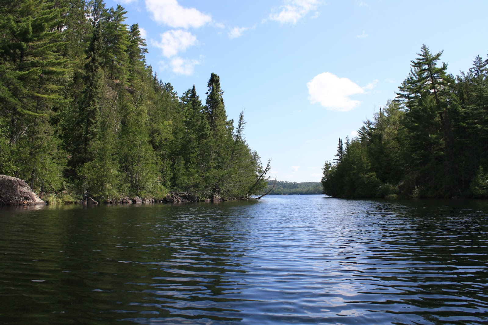 """The short story """"On the Rainy River"""" Case Study"""